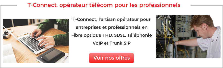 Interconnexion de sites distants
